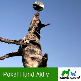 Paket Hund Aktiv (Inhalt 9kg)